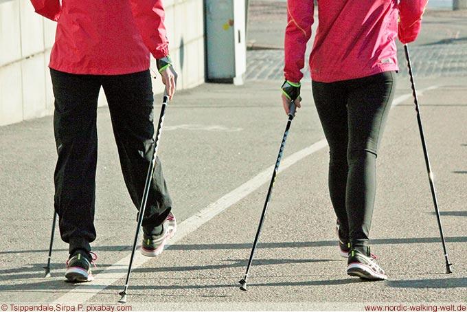 Die eigene Geschwindigkeit finden - www.nordic-walking-welt.de