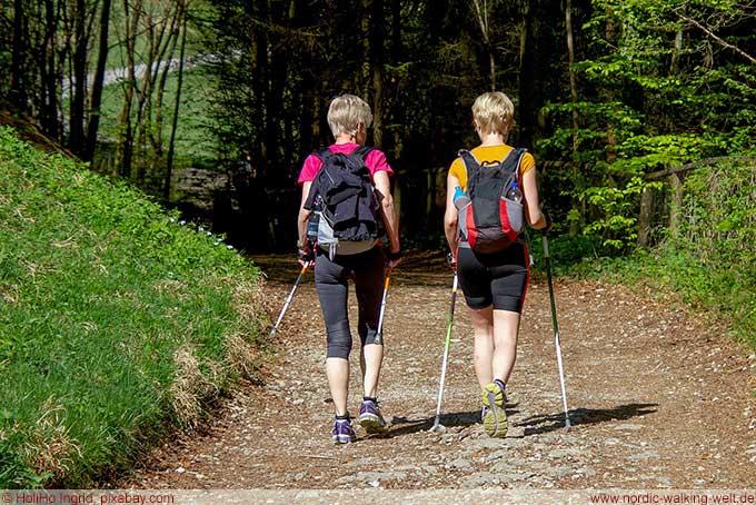 Besonders geignet zum Walking sind Wege in der Natur zum Beispiel im Wald. www.nordic-walking-welt.de
