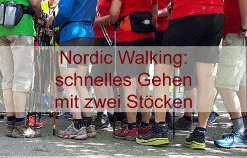 Nordic Walking – das Ausdauertraining für alle