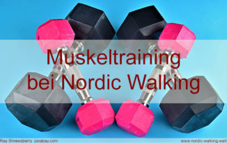Nordic Walking Muskulatur