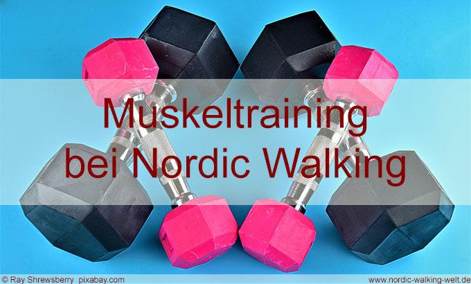 Nordic Walking trainiert auch die Muskeln