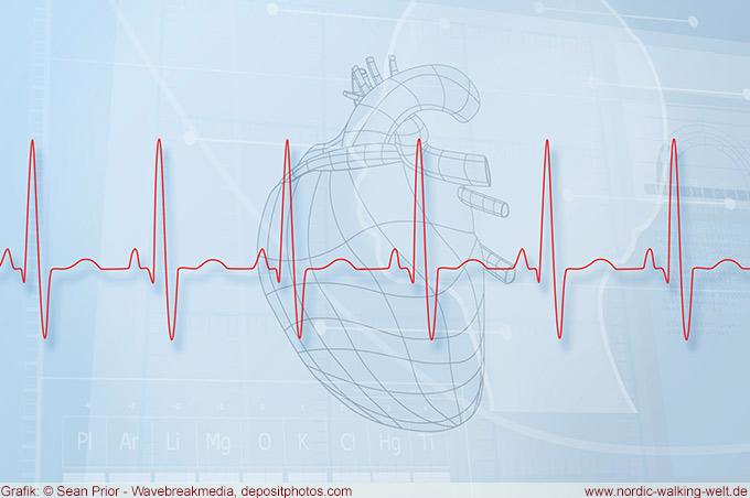 Mit der optimalen Herzfrequenz beim Nordic Walken ist das Abnehmen einfacher.