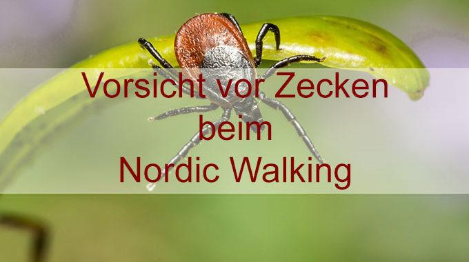 Zeckenbiss beim Nordic Walking Sport